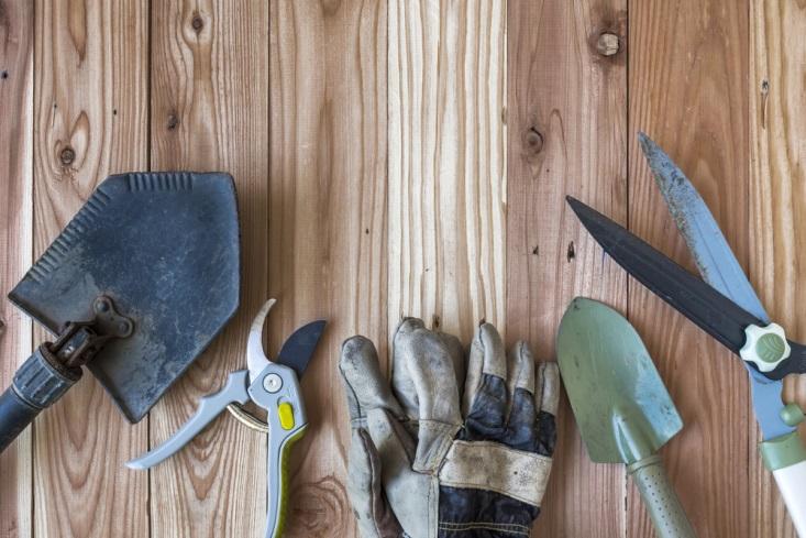 garden tools to start gardening
